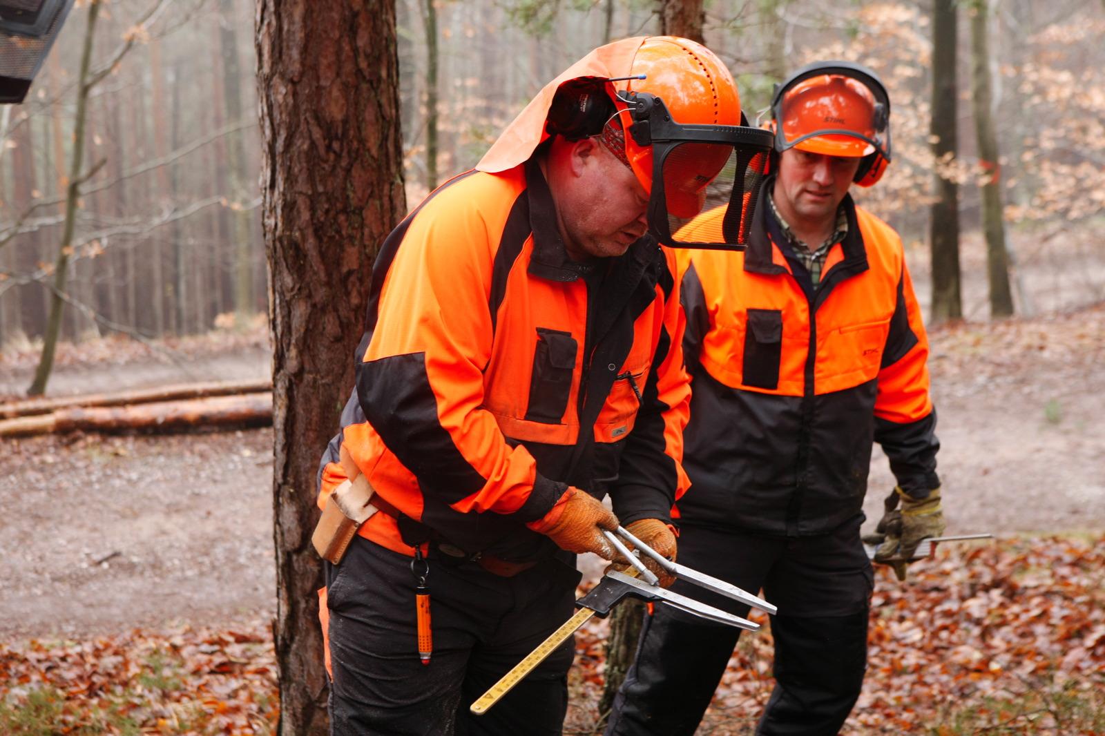Motorsägenkurs - Guido Sprenger Forstservice