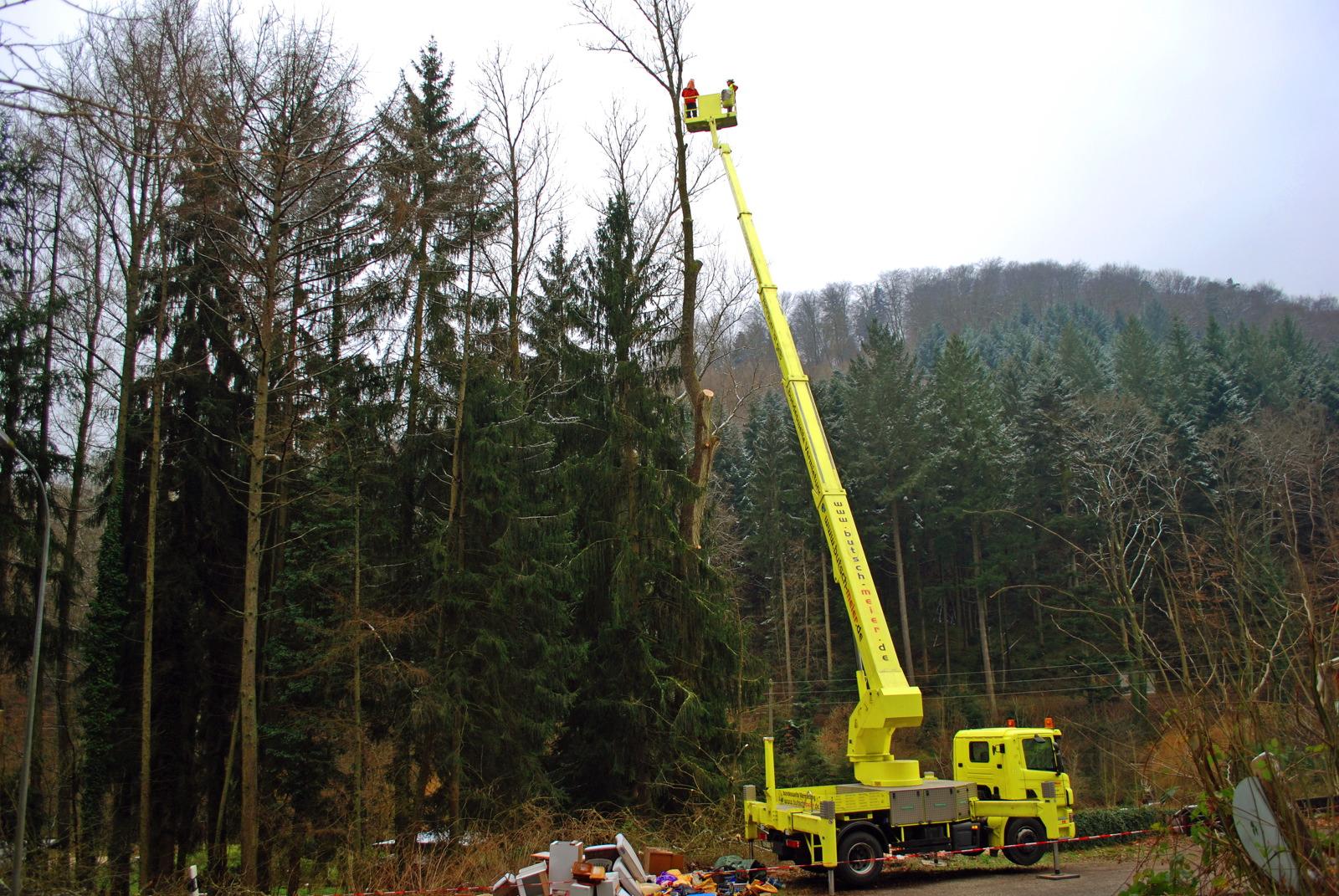 Baumsichtung mit Teleskopkran - Guido Sprenger Forstservice